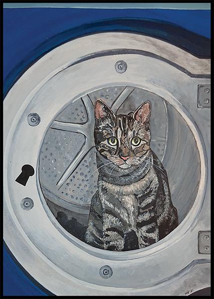 Maisy in de wasmachine